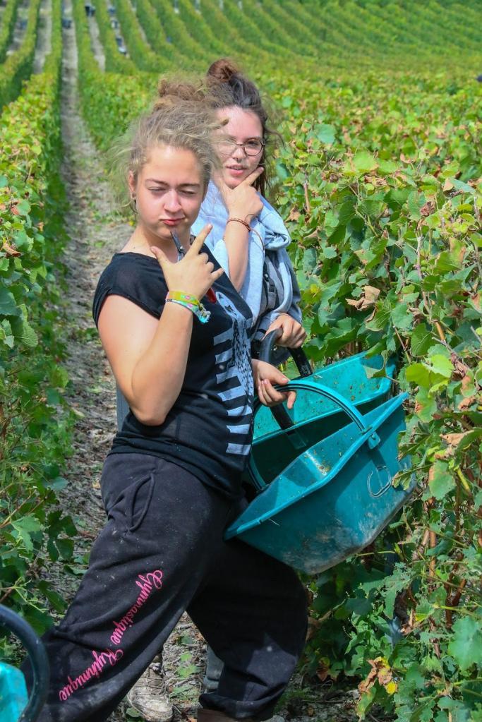 Journée dans le Vitryat