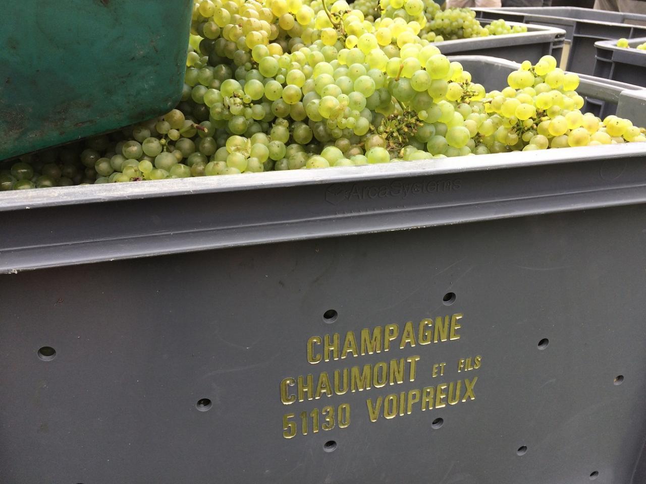 Champagne Chaumont et Fils...